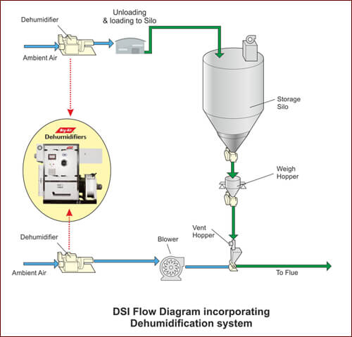 DSI Flow Diagram
