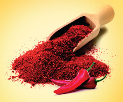 Spice - Food Industry